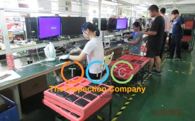 During Production Inspection (Dupro)
